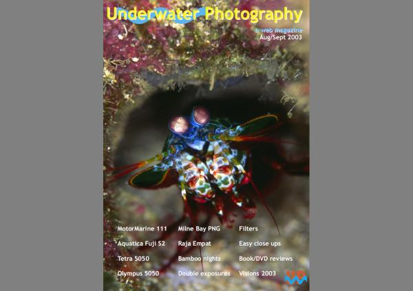 UwP issue 14 cover