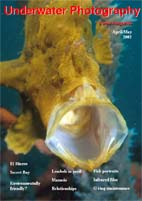 UwP6 cover